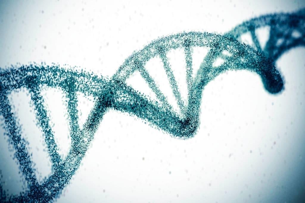 Epigénetica epigenetica